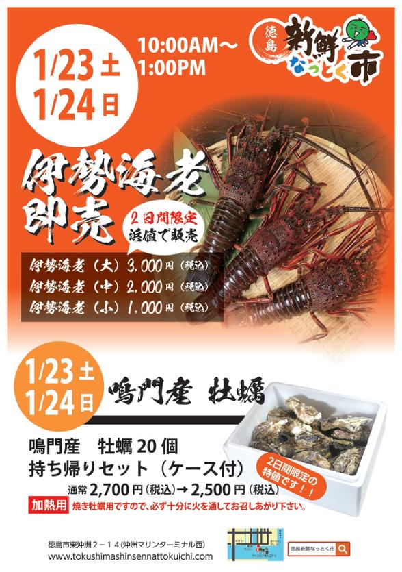 1/23・24徳島県産伊勢海老即売