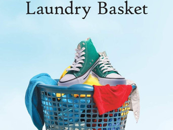 Book Discovery: A Pair of Shoes in the Laundry Basket by Thomas J.F.