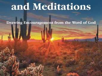 Special Feature: Daily Reflections and Meditations by Michael J. Akers and  Ryan M. Akers