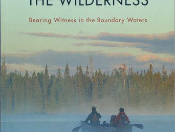 Big Indie Book of 2017: A Year in the Wilderness: Bearing Witness in the Boundary Waters by Amy and