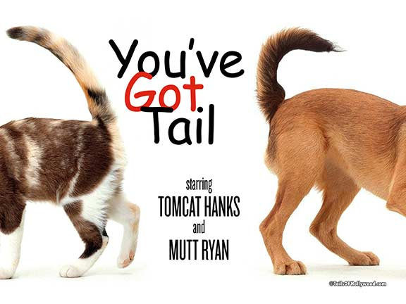 YOU'VE GOT TAIL -DOG and CAT
