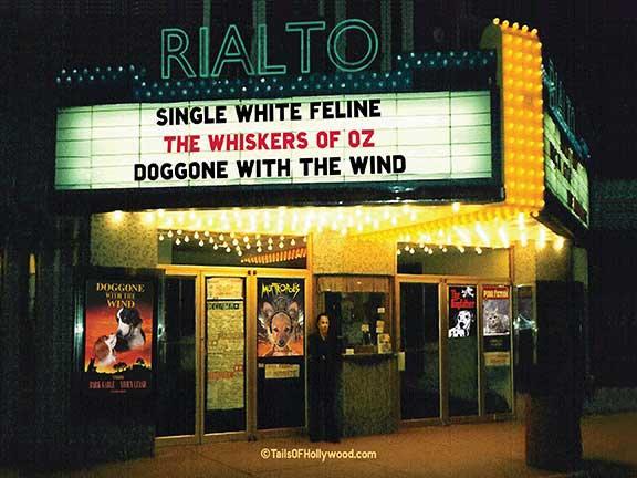 RIALTO Theatre DOGS and CATS