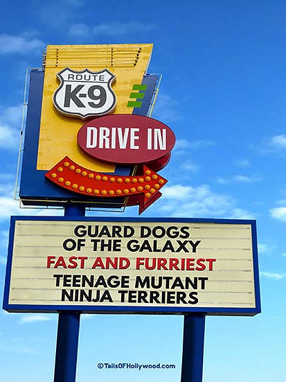ROUTE K-9 DRIVE IN