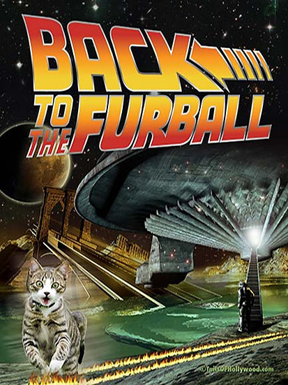 BACK TO THE FURBALL