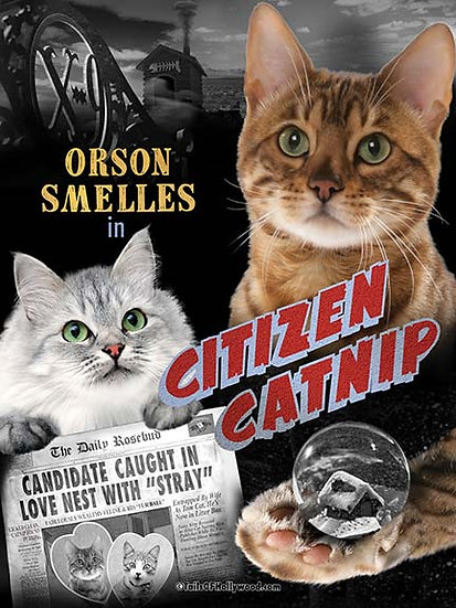 CITIZEN CATNIP