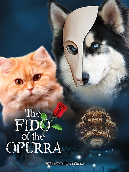 THE FIDO OF THE OPURRA -DOG and CAT