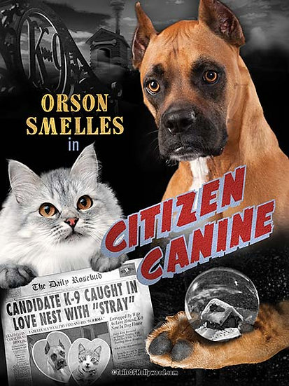 CITIZEN CANINE - DOG and CATS