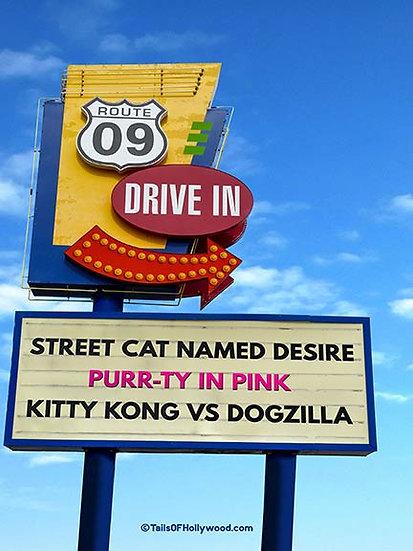 Route 09 DRIVE IN - CATS