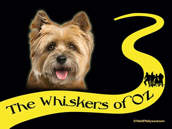 THE WHISKERS OF OZ - DOG