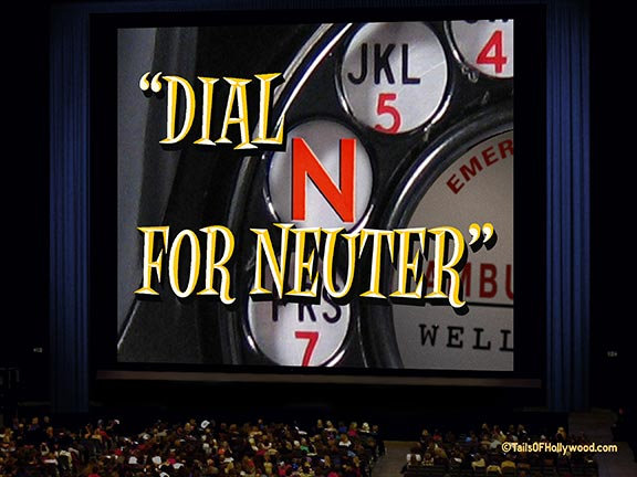 DIAL N for NEUTER - Audience-Theatre