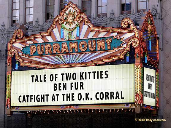 PURRAMOUNT Theatre Cats