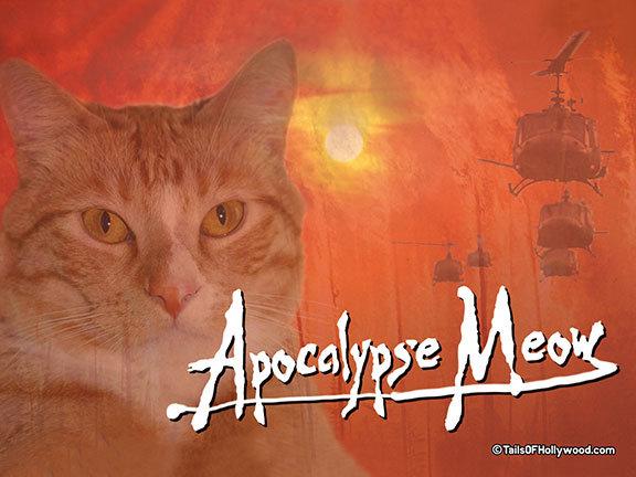 APOCALYPSE-MEOW