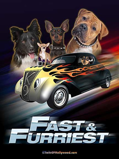 FAST AND FURRIEST - DOGS