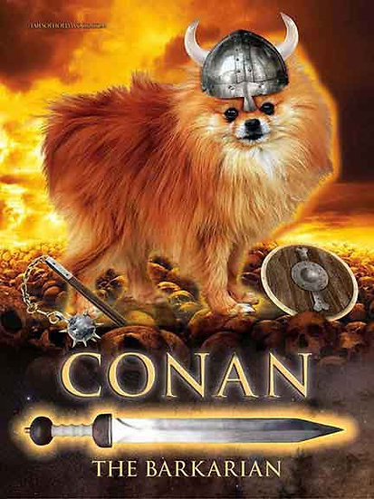 CONAN THE BARKARIAN