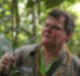 Polyrhachis, Shattuck_59343, Maliau Basin, Sabah.jpg