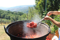 making passata view.JPG