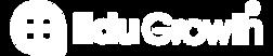 EduGrowth Logo Vector White.png