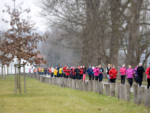 Závody se blíží, Aneb jak trénovat v únoru