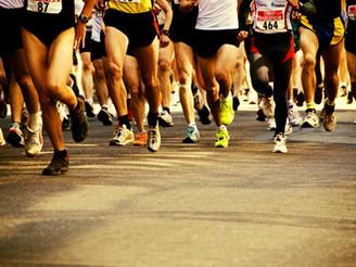 Trénink na podzim na desítku a půlmaraton