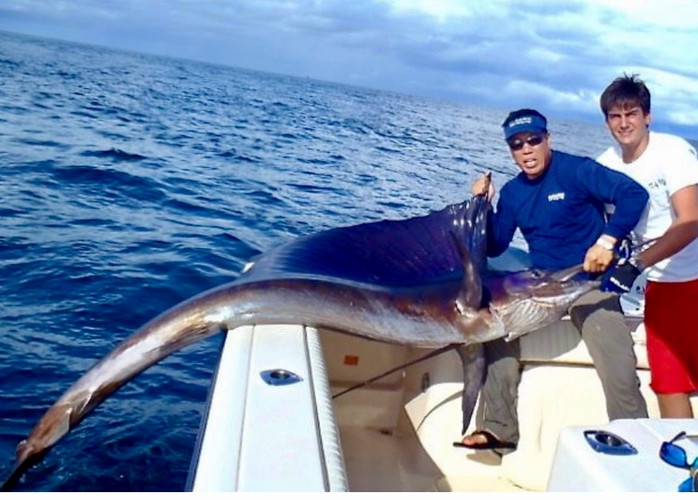 massive marlin caught in Panama