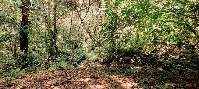La Semilla Hiking Trail in Cerro Azul