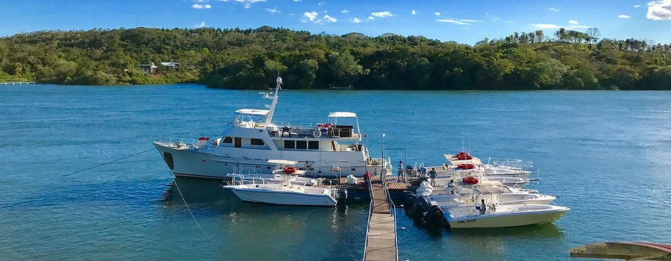 Panama Sport Fishing fleet at dock in Boca Chica