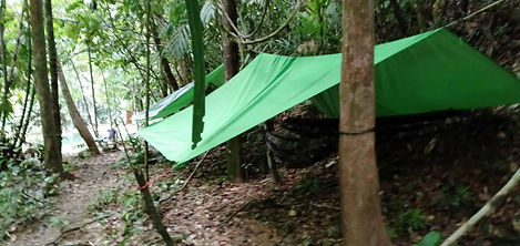 jungle camping package at la semilla panama in cerro azul