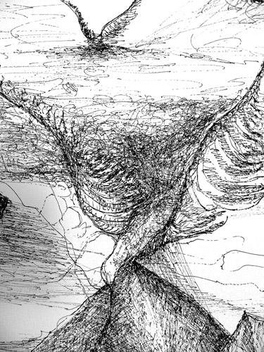 Zeichnungen Metamorphose(Ausschnitt)