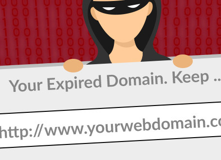 Don't Let Crooks Hijack Your Domain