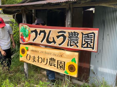 「ひまわり農園」開園のお知らせ