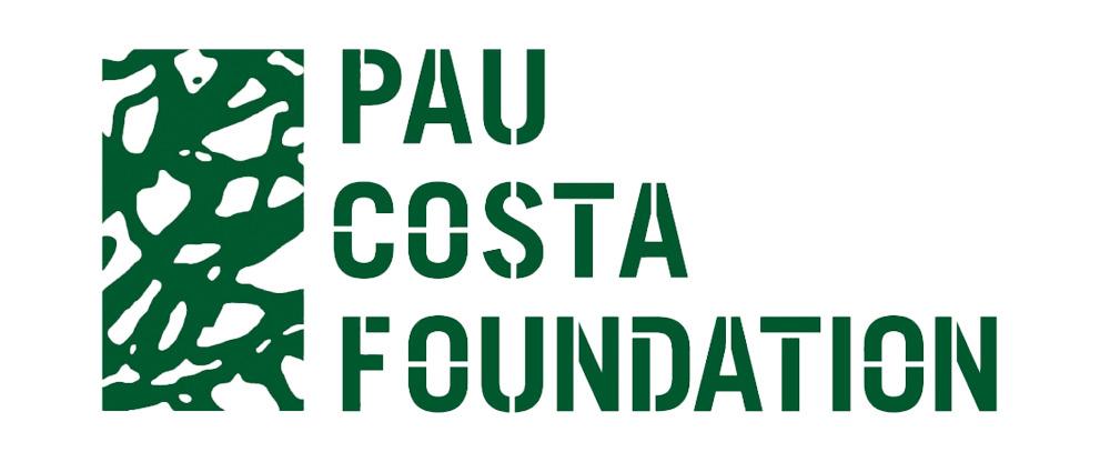 PAU COSTA FOUNDATION