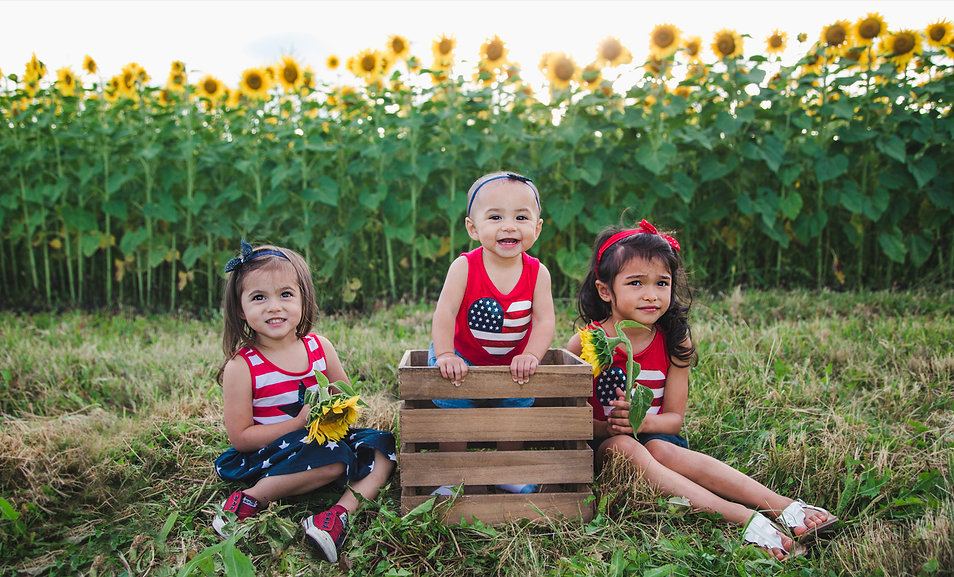 mfp-laborday2019-sunflower.jpg