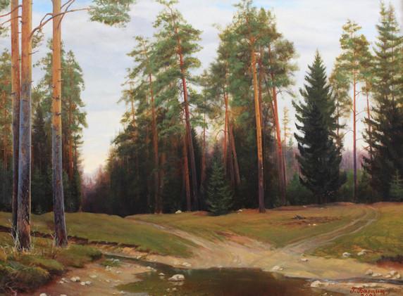 Lesnoj ruchej bliz Diveevo_2004_Otel-Vystavochnyj zal-Barcic