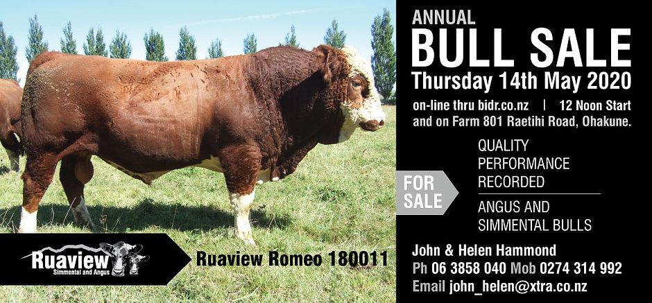 Ruaview-flyer-facebook-09.04.2020-1.jpg