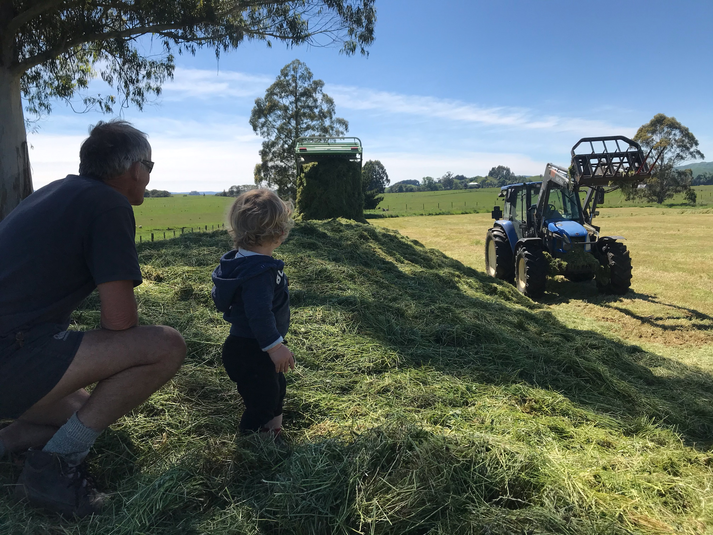 John Hammond and Grandson doing silage