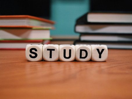 Why Japanese University Students Do Not Study?