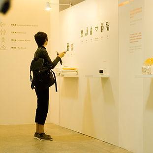 引路, 避難場所, 指標系統展覽