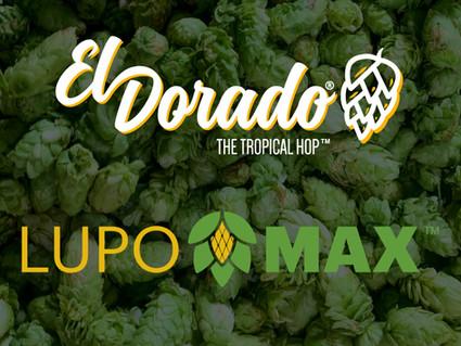 El Dorado® LUPOMAX® NOW AVAILABLE