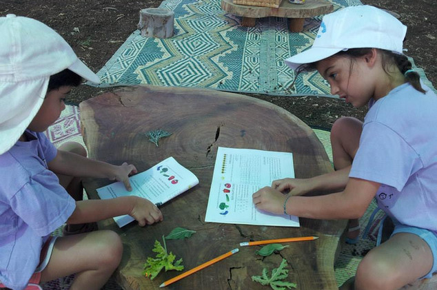 כתב חידה בגינות ירק