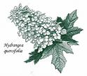 GNPS logo.png
