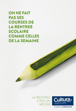 Cultura RDC - Courgette