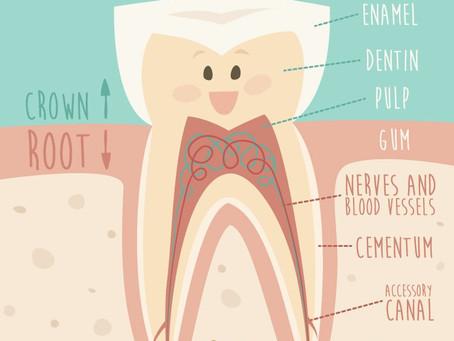 Ice Cream & Tooth Sensitivity