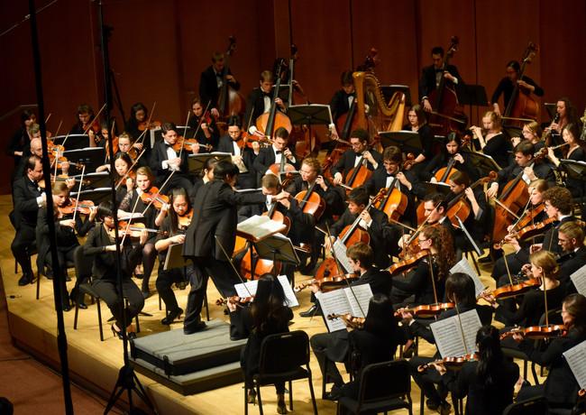 Mahler Symphony No. 1, Accompanietta Orchestra