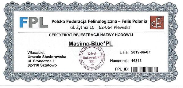 masimo blue.jpg