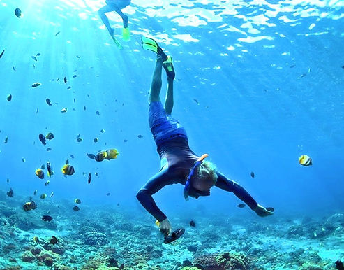 Snorkeling in Indian Ocean