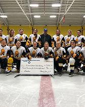 Eveleth Gilbert Girls Hockey