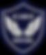 Icaris_Sentinel_Logo.png