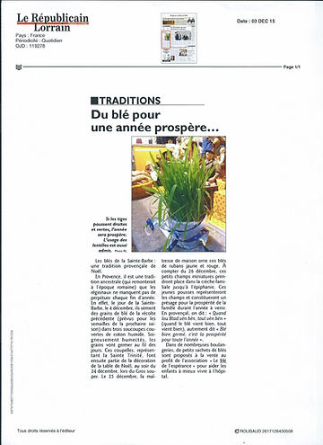 article presse 4.jpeg