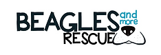 Beagles and More Rescue