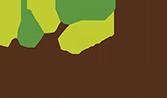 FYI logo.png